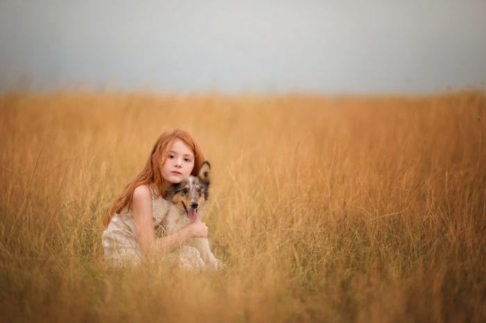 Пшеничное поле в окутывании предвечерней зори.
