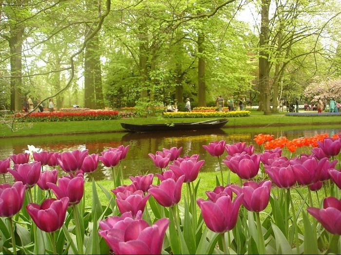 Самый большой цветник в мире, известен как Сад Европы.