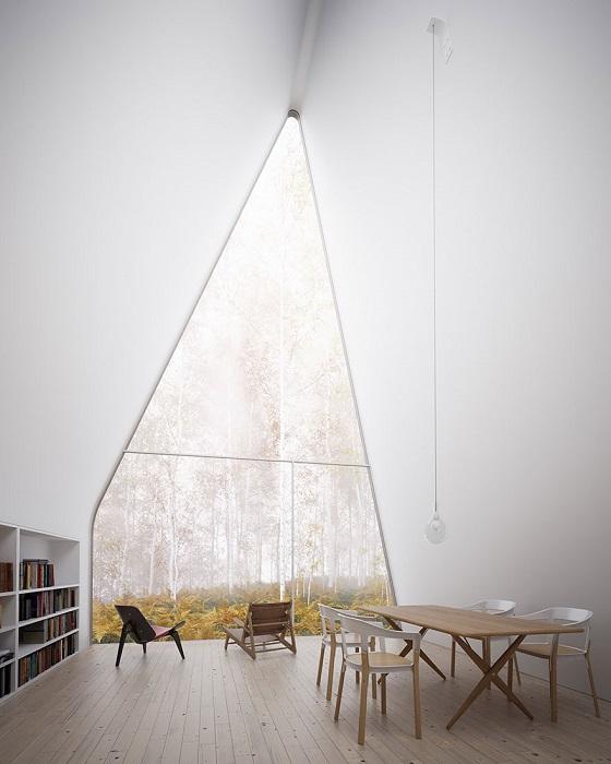 Вид из окна на берёзовую рощу.