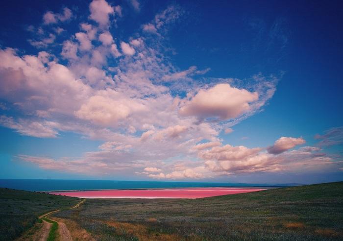 Озеро в Австралии приобретает розовый цвет от химического вещества, которое производится водорослями.