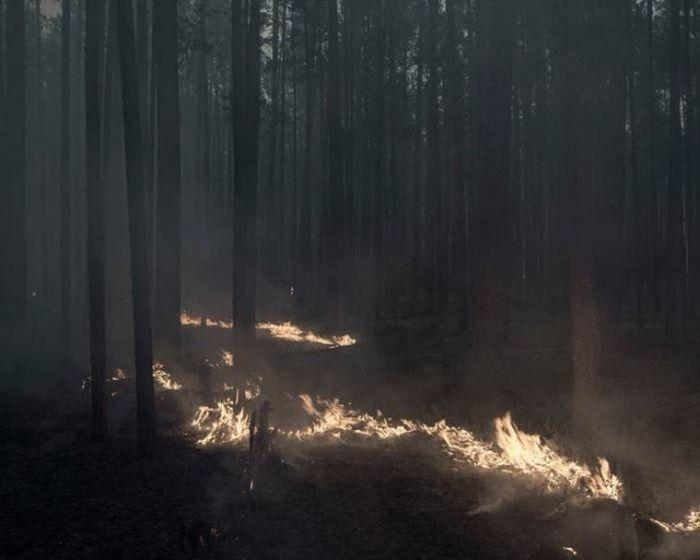 В июле 2016 года жителям деревни пришлось бороться с сильным лесным пожаром.