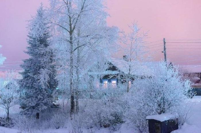 Художница-зима украсила окружающие деревья сверкающим и блестящим инеем.