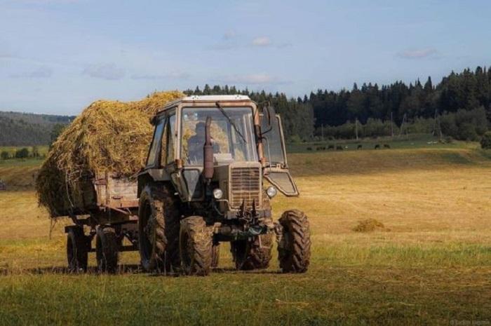 Старенький трактор – незаменимый и неустанный помощник деревенских жителей.
