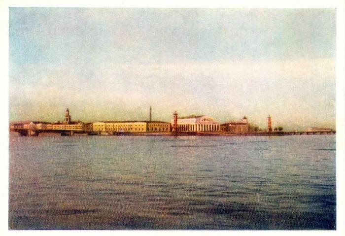 Васильевский остров находится в центре Санкт-Петербурга и омывается водами Большой и Малой Невы.