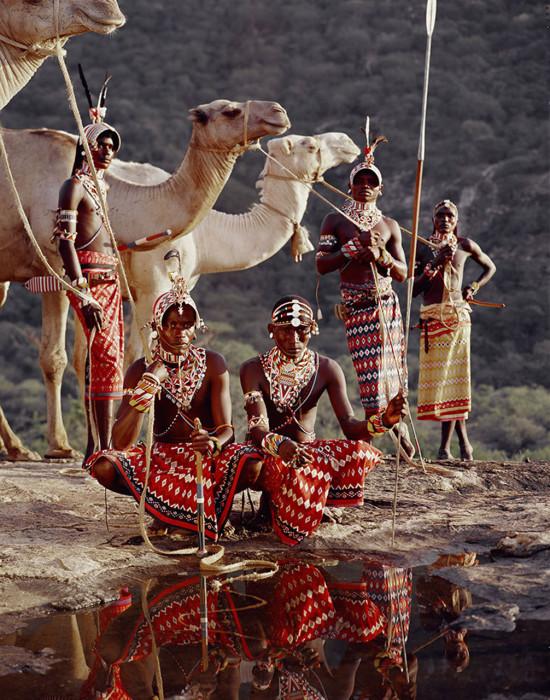 Самбуру вынуждены кочевать с места на место каждые 5-6 недель в поисках пастбищ для скота.