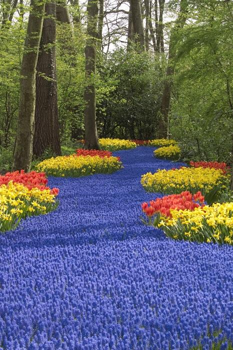 Королевский парк цветов – сад Европы.