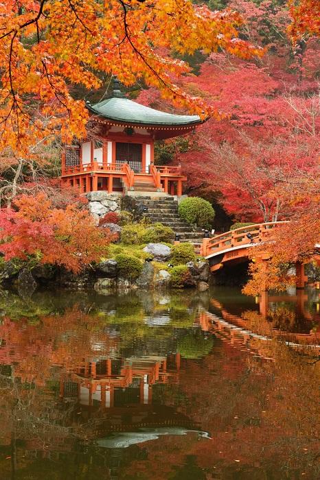 Киото был столицей Японии более тысячи лет, став за это время хранилищем лучших достижений японского искусства, культуры, религии и мысли.