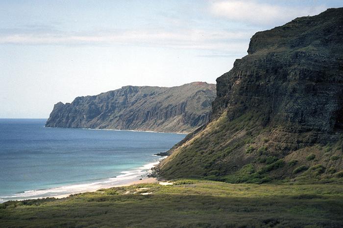 Доступ в частные владения семьи Робинсонов, прозванные «Запретным островом», можно получить только по специальному приглашению.