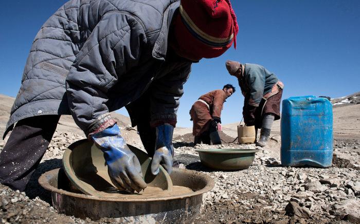 Некоторые животноводы, разорившиеся после суровых зим, вынуждены заниматься добычей золота в степи.