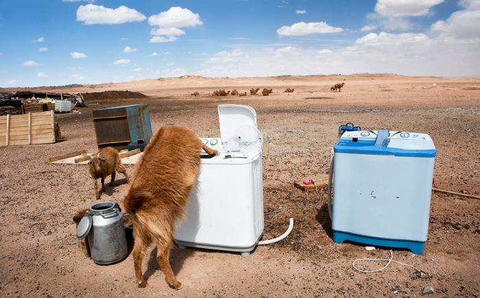 Стиральные машины и козы посреди пустыни Гоби, что в переводе с монгольского означает «безводное место».