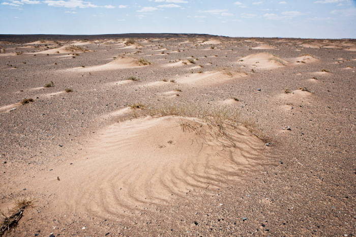 Изменение климата привело уменьшению количества осадков, что в свою очередь стало причиной эрозии гумуса.