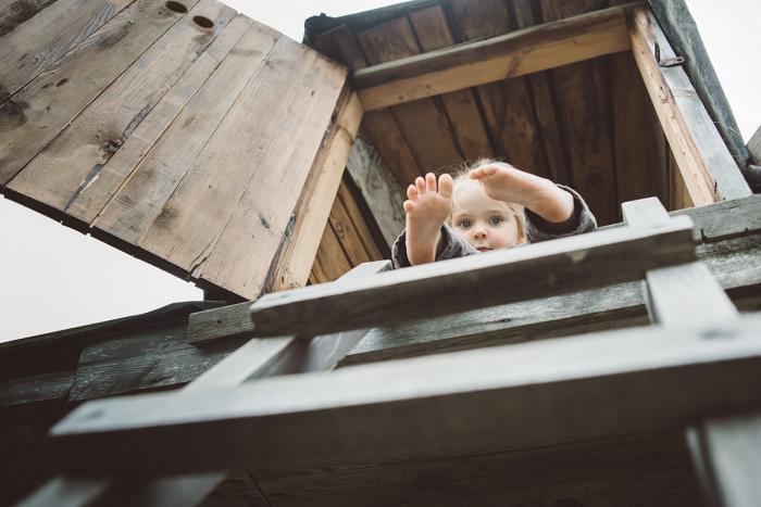 С чердачного помещения выглядывает красота. Автор фотографии: Елена Снегирева.