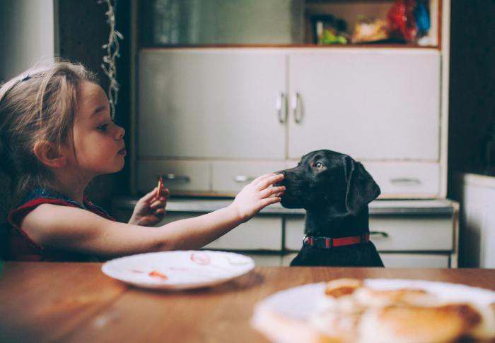 Девочка делится лакомством со своим псом. Автор фотографии:Олеся Турукина.