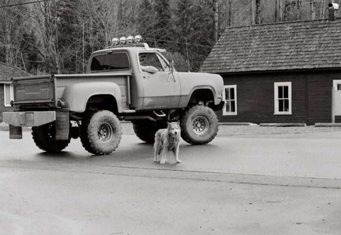18 лет – очень внушительный возраст для собаки таких размеров.