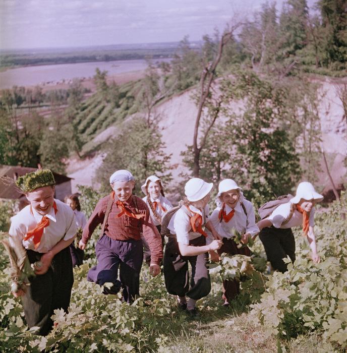 Школьники выполняют задание данное учителем во время туристического похода.