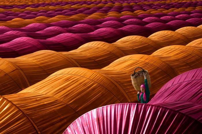 Турецкая работница проходит между яркими теплицами. Автор фотографии: Лэйла Эмектар (Leyla Emektar).