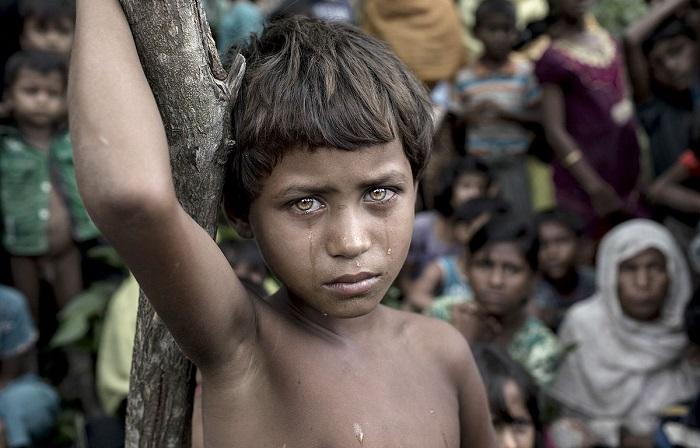 Снимок «Жертва сражения» авторства К. М. Асада (K. M . Asad.) признан лучшей фотографий конкурса.
