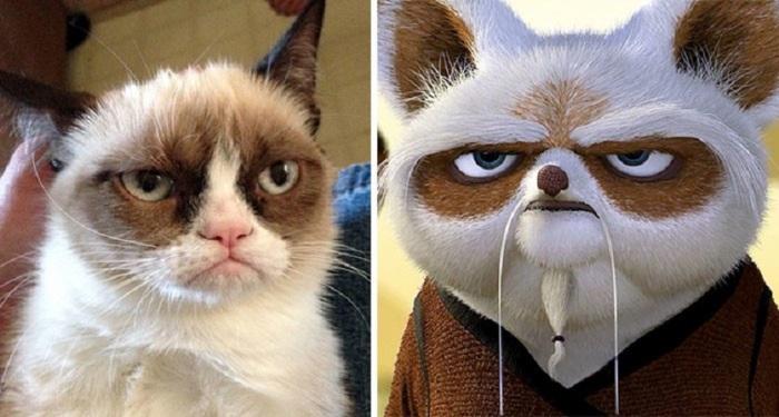 Возможно, необычная внешность сердитого кота нашла воплощение в маленьком учителе Неистовой Пятерки.
