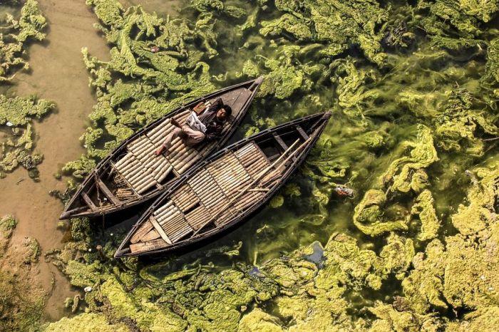 Джамалпур, Западная Бенгалия, Индия. Автор фотографии: Дебашис Мукерджи (Debashis Mukherjee).