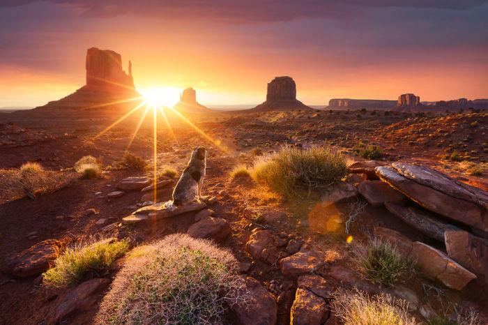 Монолитные глыбы в лучах уходящего солнца.