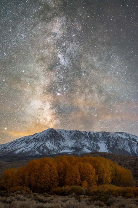 Такой необычный и далекий мир. Автор фотографии: Brandon Yoshizawa, Япония.