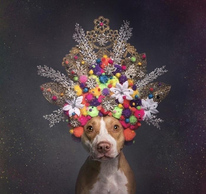 Корона из цветов символизирует эфемерность жизни.