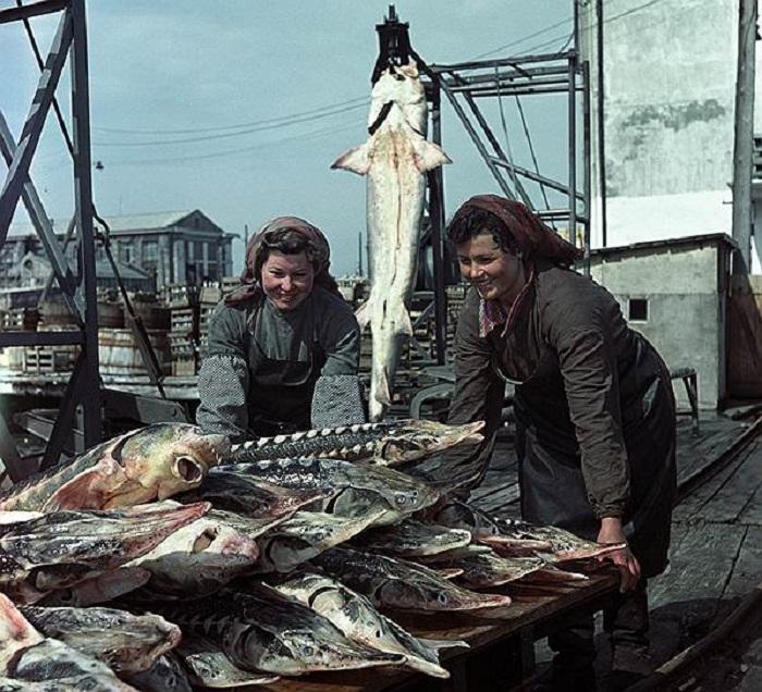 Работницы Креченского рыбокомбината.