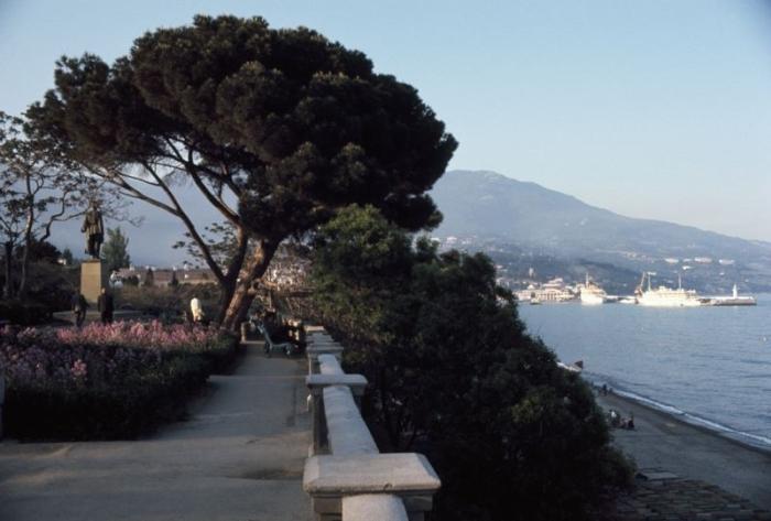 Деревья давали достаточно тени, чтобы отдыхающие могли укрыться от палящего солнца и любоваться красивым морем.