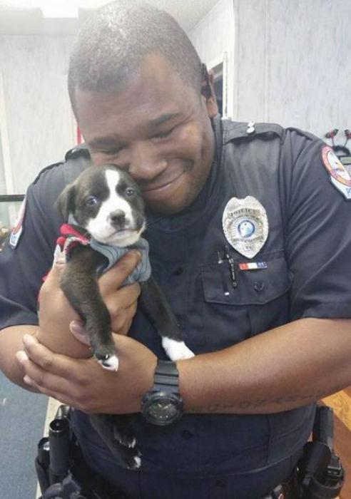Офицер забрал домой спасенного щенка.