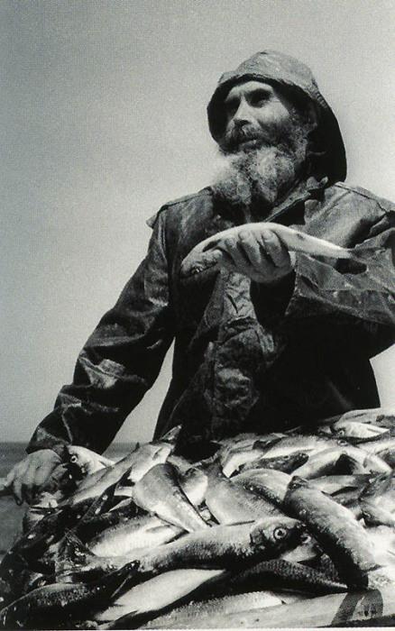 Утренний улов рыбака.