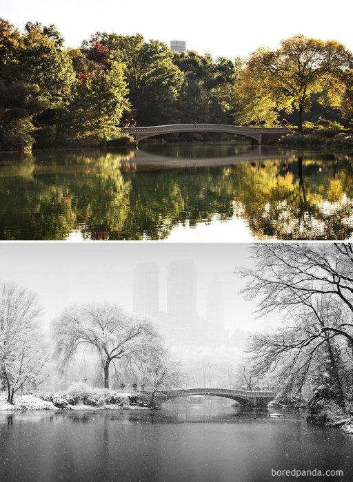 Центральный парк Нью-Йорка, является самым посещаемым парком в Соединенных Штатах и великолепным архитектурным строением, хотя построек там нет.