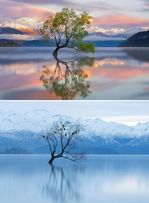 Четвертое по величине озеро Новой Зеландии, на берегу которого стоит одноименный городок.