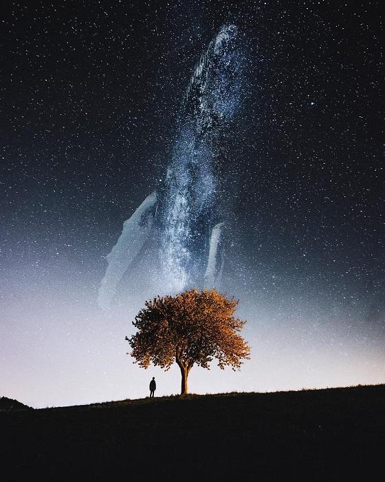 Силуэт звездного кита на фоне светлеющего ночного неба.