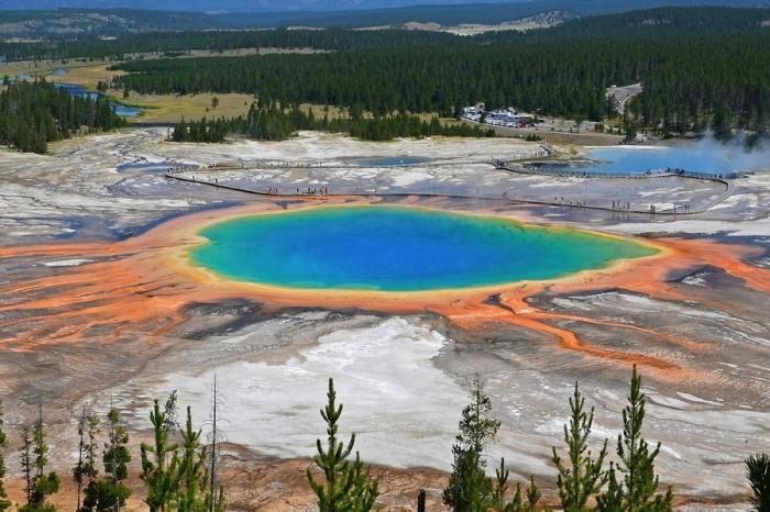 Яркие цвета источнику придают организмы, живущие в воде.