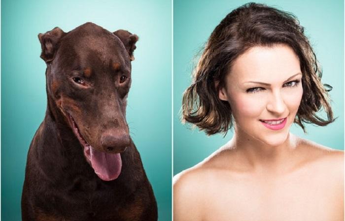Веселые портреты собак и их хозяев.