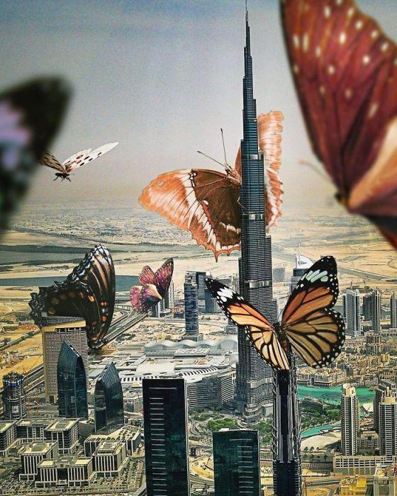 Сюрреалистическая картина с бабочками работы цифрового художника Саида Афхамзаде.