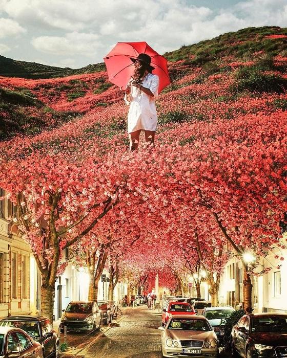 Весна, которая радует яркими красками, является любимым временем года Саида Афхамзаде.