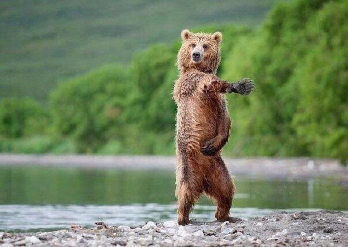Экстравагантный танцор.