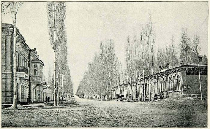 Связывала окраинные районы города с основным центром обширной торговой деятельности — Воскресенским рынком.