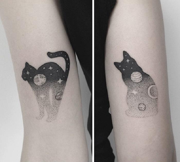Магическая сила исходящая от кошки.