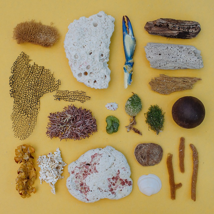 Каждый предмет ассоциируется с морем, а фон - ну точно песок.