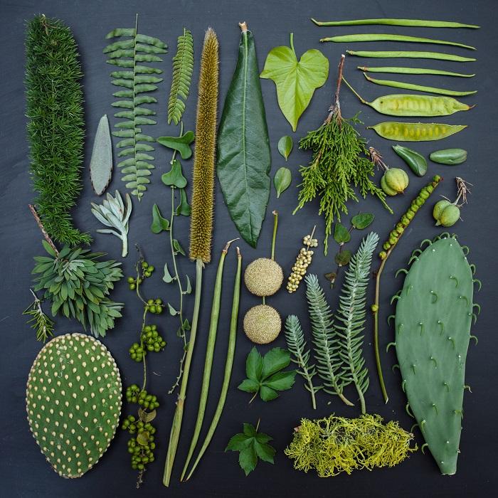 Зеленый - самый расслабляющий цвет и это цвет самой природы.