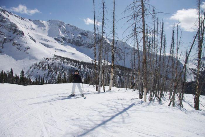 Лыжник в костюме просто растворился на фоне снежного пейзажа.
