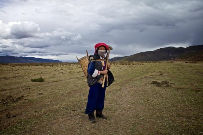 Жительница сельской местности собирает навоз, который потом будет использован в качестве удобрения для посевов.
