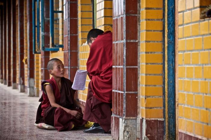 В монастыре Ганзи проживают более 600 монахов, которые обучаются письменности и чтению, молитвам и религиозным песням.