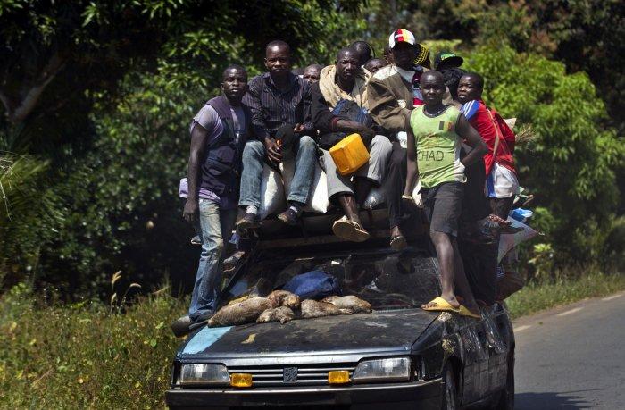 Перевозка грузов и пассажиров, плюс тушки каких-то животных, которых, скорее всего, употребят в пищу.