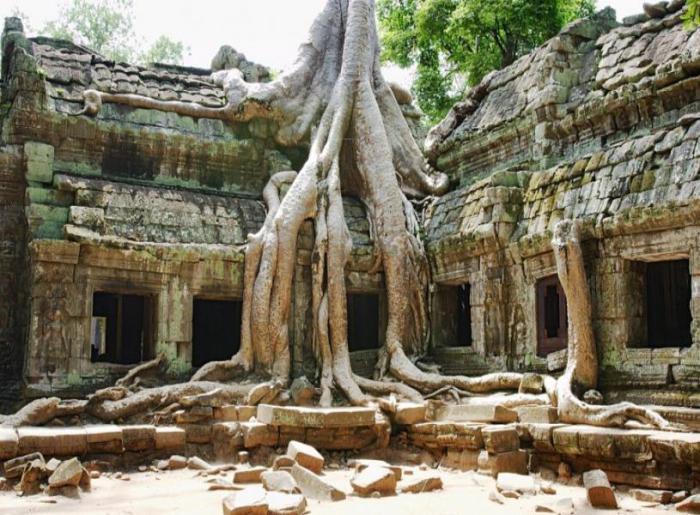Место интересное руинами древнего города Ангкор, которые скрывались в джунглях от посторонних глаз многие века.