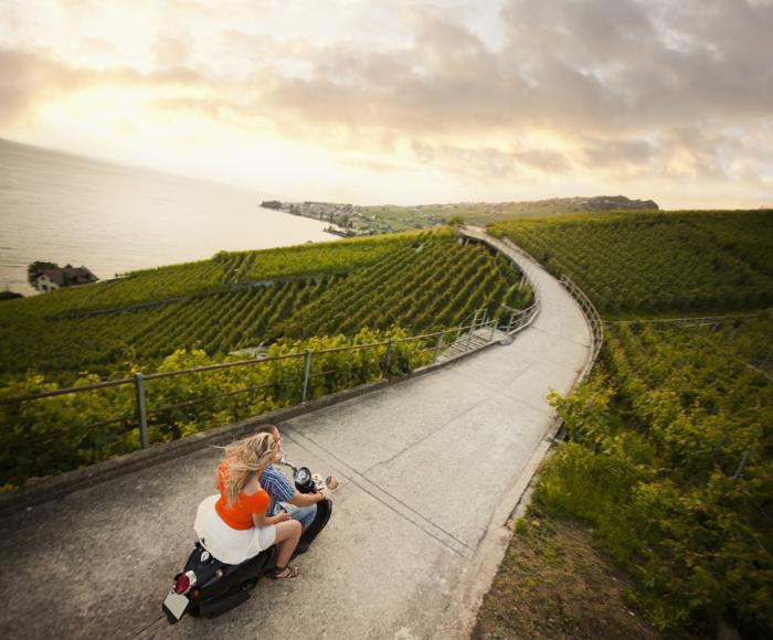 Пара на скутере проезжает вдоль побережья с виноградниками.