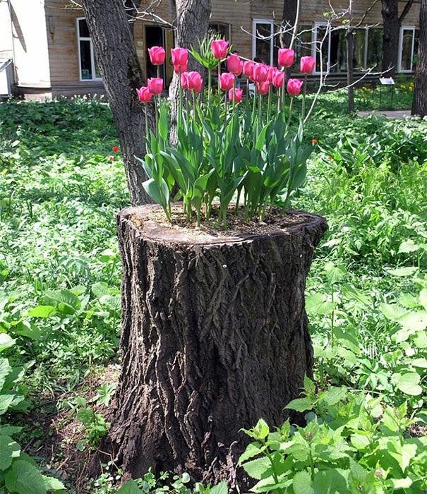 Привлекательный элемент садового декора.