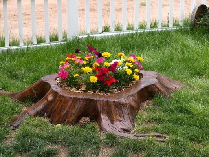 Цветочная клумба, которая радует всех членов семьи и восхищает гостей.
